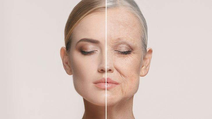 Strategies to Get The Excellent Anti-aging Serum