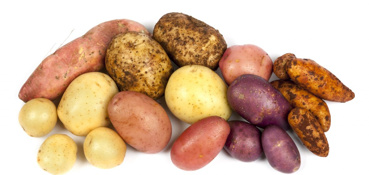 Potatoes Are More Than Consumption